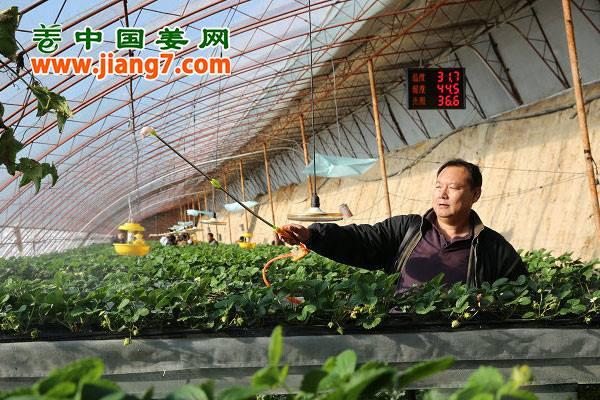 新技术带领现代农业发展 ()