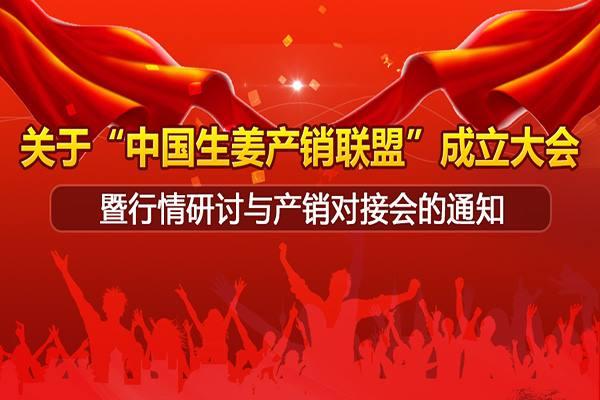 """关于""""中国生姜产销联盟""""成立大会 暨行情研讨与产销对接会的通知 ()"""