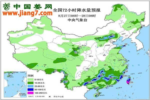 降雨+高温又至,上水姜需及时处理 ()
