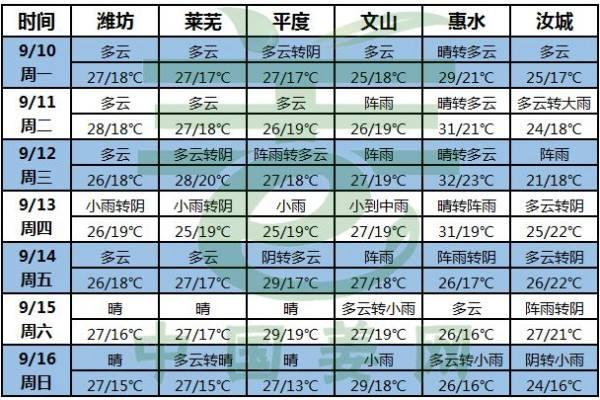 晴好天气助力大姜生长! ()