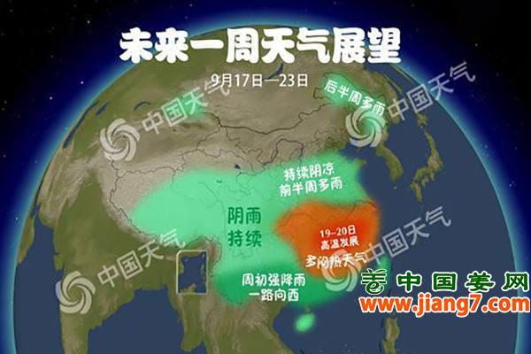 大姜旺长期,天气更给力! ()