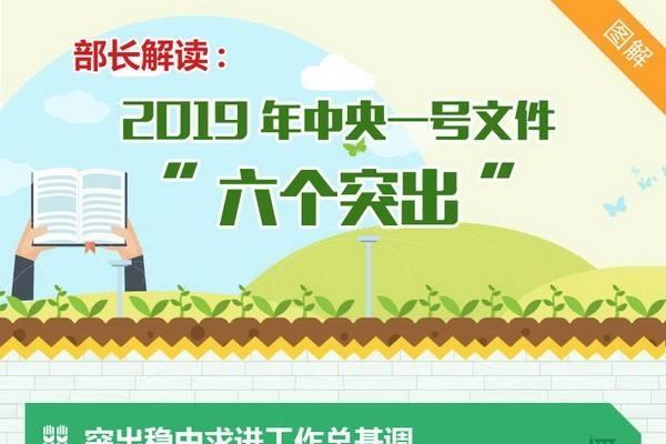 """部长解读:2019年中央一号文件""""六个突出"""""""