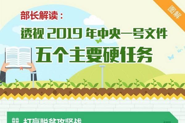 部长解读:透视2019年中央一号文件五个主要硬任务