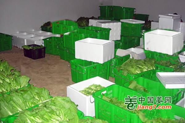 宁夏海原制冰厂运营保证新鲜果蔬供应