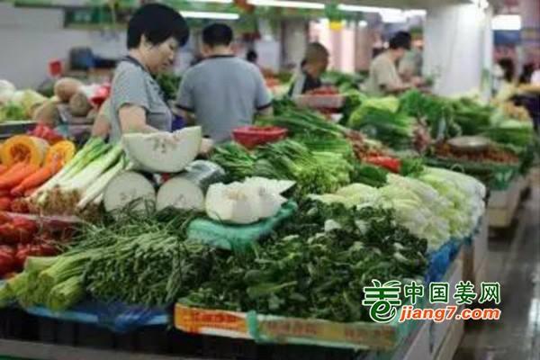 江苏镇江:蔬菜价格或会攀升