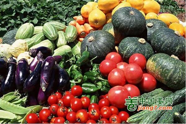 三亚蔬菜供应充足