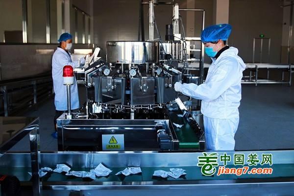 铜陵:深入研发生姜新产品 提升企业竞争力