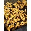 山东莱州大量优质大姜出售