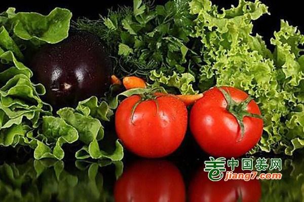 兰州:菜价小幅下滑 蔬菜滞销问题基本解决
