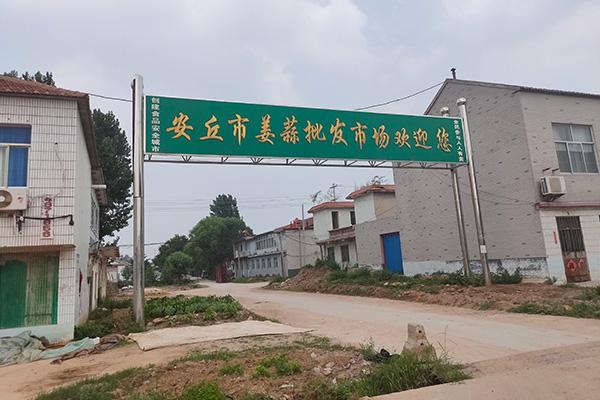 盛夏潍坊环游记—安丘篇 ()