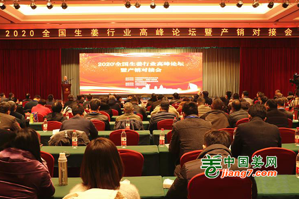 2020全国生姜行业高峰论坛暨产销对接会在平度举办 ()