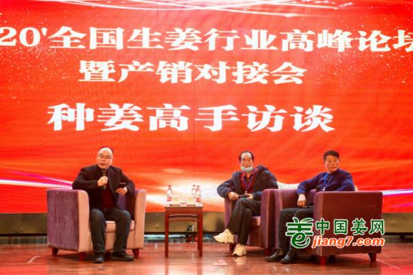 2020全国生姜行业高峰论坛——高手访谈 ()