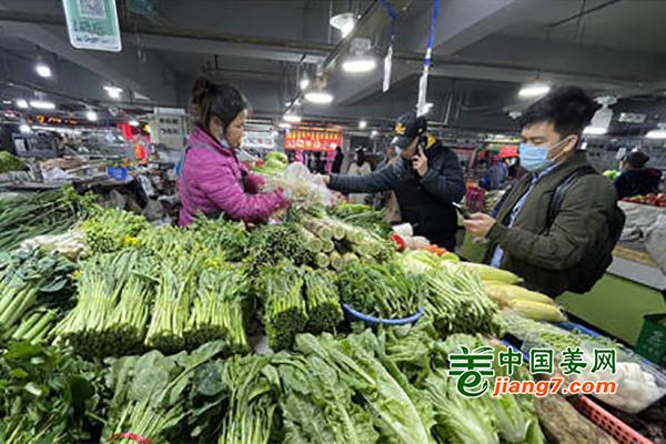 广西南宁:反季节蔬菜价格涨幅明显 ()