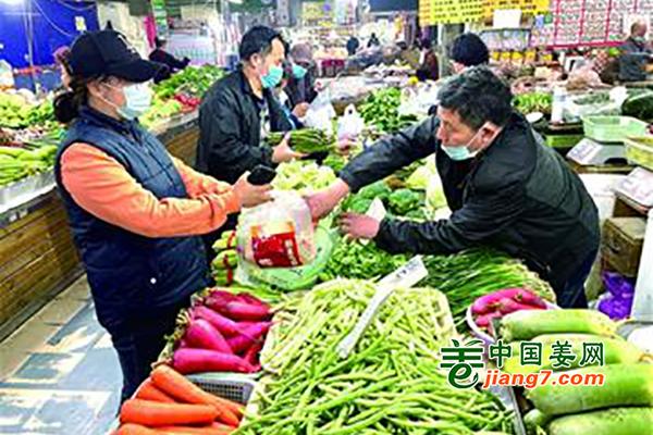 青岛:蔬菜大量上市 价格更亲民 ()